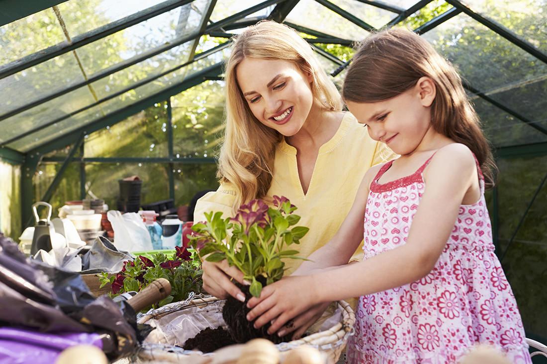 Outdoor Garden Plant Sales Area