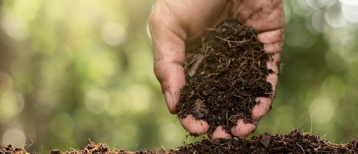 Compost Deals